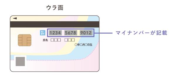 マイナンバーカードの裏面にマイナンバーが記載されている