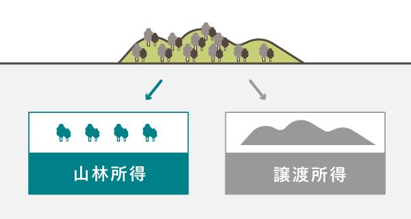 山林所得と譲渡所得 - 山ごと譲渡する場合